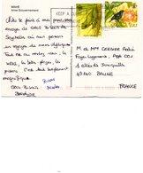 Sur Carte Mahé, Anse Du Gouvernement. Timbres Oiseau, Grenouille. 1965. - Seychelles (1976-...)