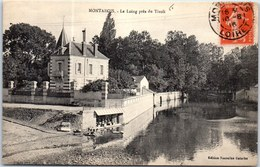 45 MONTARGIS - Le Loing Près Du Tivoli. - Montargis