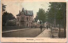 45 MONTARGIS - Pont Du Tivoli (couleurs) - Montargis