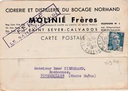 Carte Commerciale 1948 / Cidre / Cidrerie Distillerie Bocage Normand / MOLINIE Frères / 14 Saint-Sever Calvados - Maps