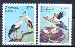 LITOUWEN    (OEU 790) - Cigognes & échassiers