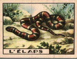 CHROMO  L'ELAPS - Trade Cards