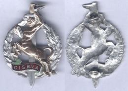 Insigne Du Centre D'Instruction Du Service Biologique Et Vétérinaire Des Armées - Services Médicaux