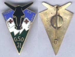 Insigne Du Groupe Sanitaire Divisionnaire N° 31 - Services Médicaux