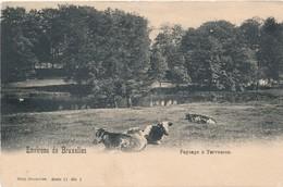 CPA - Belgique - Tervuren - Paysage à Tervueren - Tervuren