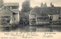 Belgique - Tongres - Vue Du Moulin D' Ovée - Nels Série 40 N° 17 - Tongeren