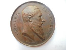 BELGIQUE-EXPOSITION 1880 Par CH.WIENER 53 Grammes-50 Mm - Professionals / Firms