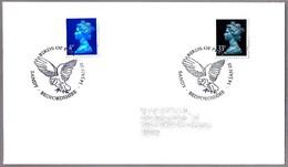 AVES DE PRESA - BIRDS OF PREY. BUHO - OWL. Sandy, Bedfordshire,  2003 - Aigles & Rapaces Diurnes