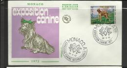 Monaco FDC YT 880 B  Chien Dog  Hund Perro Hundo Pies - Honden