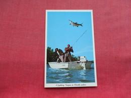 Fighting Tarpon Everglades National Park Florida     Ref 3296 - Fishing