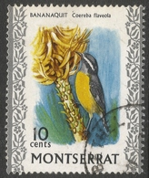 Montserrat. 1970 Birds. 10c Used. SG 247 - Montserrat