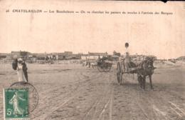 17 CHATELAILLON LES BOUCHOLEURS ON VA CHERCHER LES PANIERS DE MOULES A L'ARRIVEE DES BARQUES ANIMEE ATTELAGES - Fishing