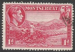 Montserrat. 1938-48 KGVI. 1d Used. P14 SG 102a - Montserrat