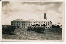 Carte Photo ILE MAURICE C. 1910 - Sucrerie En Temps De Coupe Train Wagonnets - 2 - Mauritius