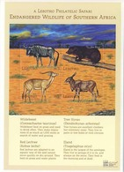 MDA-BK1-239-2 MINT ¤ LESOTHO 2000 4w In Serie  ¤ WILD OF SOUTH AFRICA - MAMMALS OF THE WORLD - WILD ANIMALS - Sellos