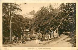 68* TROIS EPIS Arret  Tram          MA88,0530 - Trois-Epis