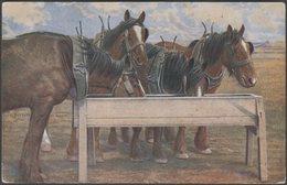 Dray Horses At The Trough, C.1920 - James Henderson Postcard - Horses