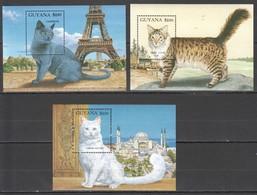 P477 GUYANA FAUNA PETS THE WORLD OF CATS 3BL MNH - Chats Domestiques