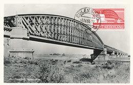 D36874 CARTE MAXIMUM CARD FD 1968 NETHERLANDS - RAILROAD BRIDGE CULEMBORG CP ORIGINAL - Culemborg