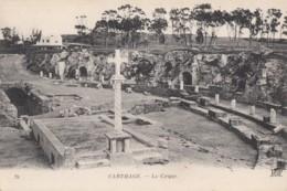 Carthage - Le Cirque - Tunisia