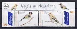 Nederland - 23 April 2019 - Europa/CEPT 2019 - Vogels In Nederland - Putter/pestvogel - MNH - Titel - Passereaux