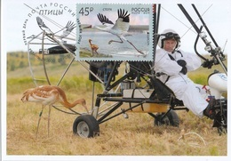 2653 Mih 2436 Russia 01 2019 Cartes Maximum Cards 1 Europa Fauna National Birds Siberian Crane Grus Leucogeranus - Cigognes & échassiers