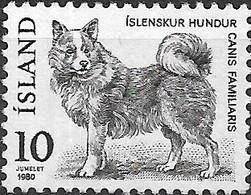 ICELAND 1980 Fauna - 10k Icelandic Dog MNG - 1944-... Republique