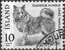 ICELAND 1980 Fauna - 10k Icelandic Dog FU - 1944-... Republique