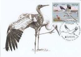 2653 Mih 2436 Russia 01 2019 Cartes Maximum Cards 2 Europa Fauna National Birds Siberian Crane Grus Leucogeranus - Cigognes & échassiers