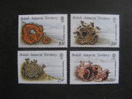 Territoire Antarctique Britannique: TB Série N° 172 Au N° 175, Neufs XX. - Neufs