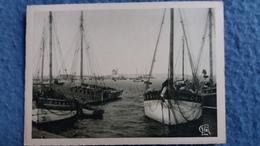 CPSM CAMARET SUR MER FINISTERE LE PORT ET LA TOUR DOREE ED ARLAUD  N° 1548 BIS BATEAUX DE PECHE - Camaret-sur-Mer
