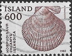 ICELAND 1982 Shells - 600a. Iceland Scallop FU - 1944-... Republique