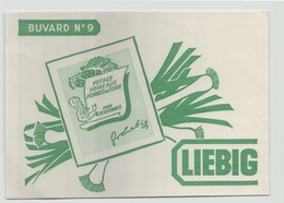"Buvard "" Liebig "" ( 20 X 14.5 Cm ) - Soups & Sauces"