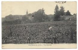 47-PRAYSSAS-Vue Générale... Animé Travail Des Vignes... - Autres Communes