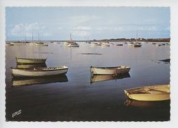 Préfailles : Port De La Pointe Saint Gildas (n°3570) - Préfailles