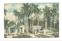 CUBA - Habana ( La Havane ) Jardin Botanico - Botanicals Gardens - Carte Colorisée  - 1924(fr75) - Cartes Postales
