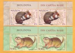 2019 Moldova Moldavie Red Book. European Hamster (Cricetus Cricetus) Speckled Ground Squirrel (Spermophilus Suslicus) 2v - Rongeurs