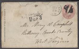 USA - Inland. C.1855-60. N Orleans - West Virginia, Bethay, Brook Cº 3c Rose Stat Env Steamship Due 3 Pmk Internal Marit - Unclassified