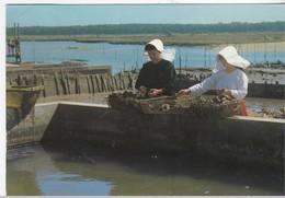 La Tranche Sur Mer - 1987 - La Tranche Sur Mer