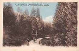 43 // LA BARAQUE ( SEMBADEL GARE ) - CHEMIN DE CHAMPVIEILLE - PAYSAGE SYLVESTRE - Otros Municipios