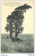 22 SAINT-JACUT-DE-LA-MER. Ormes Jumeaux. Vache Et Jeune Berger - Saint-Jacut-de-la-Mer