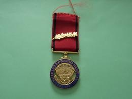 Résistance Belge_ Médaille Du Réseau SHINX - 1939-45