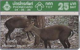 TARJETA DE TAILANDIA DE UN CIERVO  (DEER) NUEVA-MINT - Thaïlande