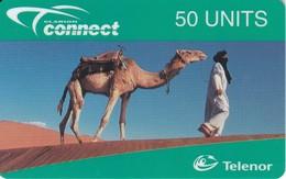 TARJETA DE NORUEGA DE UN CAMELLO (CAMEL) NUEVA-MINT - Noorwegen