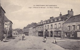 35. PLELAN LE GRAND . CPA . LA PLACE CENTRALE. ANIMATION - France