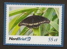 Privatpost -  Nordbrief  -   Schmetterling - BRD