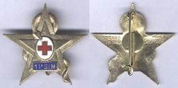Insigne De La 11e Section D'Infirmiers Militaires - Medical Services