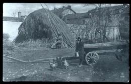 BELLA FOTOCARTOLINA DEL 1910 CON IMMAGINE DI UNA FATTORIA CON ANIMAZIONE - SPEDITA DA PONTECAGNANO - Fattorie