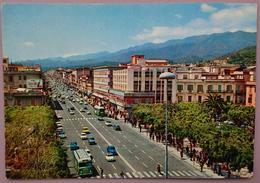 MESSINA - Viale San Martino - Auto, Cars, Bus, Insegna Coca Cola Sign -  Vg S2 - Messina