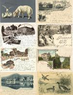 Deutschland Und Motive Partie Mit Circa 160 Ansichtskarten Dabei Etliche Lithos I-II - Kamerun
